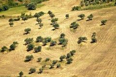 Abruzzo bygdocties Arkivfoton