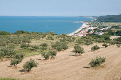 Abruzzo Coast Royalty Free Stock Photo