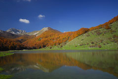 Abruzzo national park. Vallefiorita mainarde Stock Images