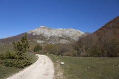 Abruzzo nationalpark - Val Fondillo Royaltyfri Bild