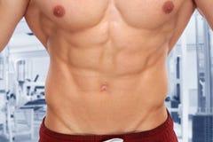 Abs abdominal muscles bodybuilder gym bodybuilding body builder Stock Photos