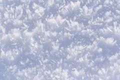 ABS all'aperto di stagione invernale della natura del primo piano dei cristalli di ghiaccio naturale immagine stock libera da diritti