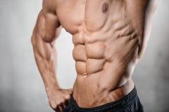 ABS di mostra di modello di addominali scolpiti di forte forma fisica atletica dell'uomo Immagine Stock Libera da Diritti