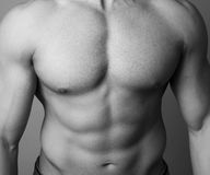 Abs of a muscular man stock photos