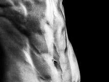 ABS musculoso de una mujer fuerte Foto de archivo libre de regalías