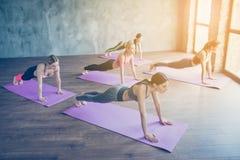Abs plankoefening Vijf geconcentreerde sportieve meisjes doen pla stock afbeeldingen