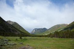 Absaroka berg Arkivfoton