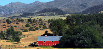 Absaroka Farmland. Red barn with tin roof sits in the rolling hills of the Absaroka Mountain Range in Montana Royalty Free Stock Photography