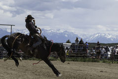 Absaroka Mountains. The Absaroka Mountains provide a backdrop for this Saddle Bronc competitor at the PRA Rodeo in Wilsall Montana Stock Photos