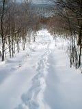 Abschüssige Schnee-Steigung Lizenzfreies Stockbild