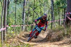 Abschüssiger Gebirgsradfahrer Lizenzfreie Stockfotografie