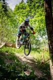 Abschüssiger mountainbike Reiter lizenzfreie stockfotografie