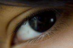 Abschluss des blauen Auges Makrooben Stockfotos
