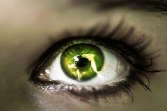 Abschluss des grünen Auges des Mädchens oben Makro Stockbilder