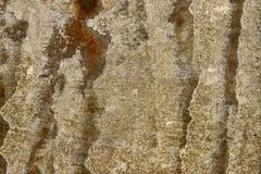 Abschluss herauf rostiges galvanisieren Eisen Stockfotos