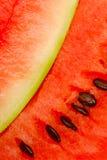 Abschluss oben der Wassermelonescheiben stockfoto