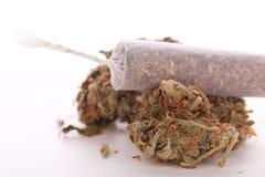 Abschluss oben von getrockneten Marihuanablättern und -gelenk Stockfoto
