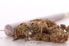 Abschluss oben von getrockneten Marihuanablättern und -gelenk Stockfotografie