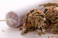 Abschluss oben von getrockneten Marihuanablättern und -gelenk Lizenzfreies Stockfoto