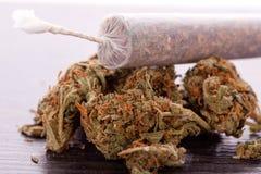 Abschluss oben von getrockneten Marihuanablättern und -gelenk Lizenzfreie Stockfotografie