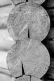 Abschluss oben von zwei schnitt die hölzernen Klotz, Schwarzweiss Lizenzfreies Stockfoto