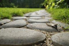 Abschluss oben Weg von den Kopfsteinen in einem Gras in einem Garten lizenzfreies stockfoto
