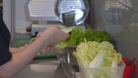 Abschluss oben Weiblicher Chef, der den Kohl zubereitet Kohl im Salat Restaurant, Küche HD stock video footage