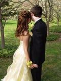 Abschlussball-Paare Half-Length Stockfotografie