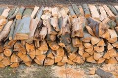 Abschnitt der Brennholzklotz Stockbild