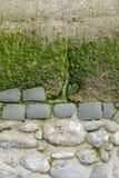 Abschnitt einer dekorativen verwitterten alten Wand durch das Meer in Normandie, Stein im Teilbeton, mit Algen und Moos, Kopienra stockbilder