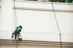 abseiling从一个高楼的玻璃清洁剂 风窗清洁器在 免版税库存图片