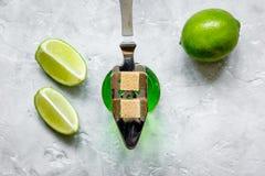 Absint i exponeringsglas med limefruktskivor på bästa sikt för stenbakgrund Royaltyfri Bild