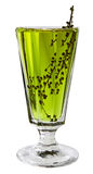 Absinthe Royalty Free Stock Photo
