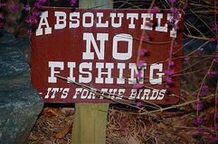 Absolutely no fishing sign. Absolutely no fishing it's for the birds stock images
