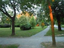 Absolvent u Srbiji Gradski-Parks u Sapcu Stockbild