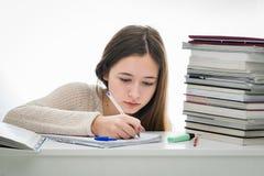 Absorberad kvinnlig student Royaltyfri Fotografi