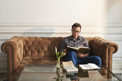 Absorbing book. Asian young man sitting in large sofa with interesting book Royalty Free Stock Photos