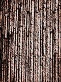 Absract, fundo interessante para o foto, parede, papéis de parede fotografia de stock