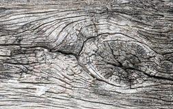 Absrtact bakgrund med den gamla träväggen Arkivbild