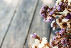 Abstact background. White and purple dry flower on wood table Royalty Free Stock Photos