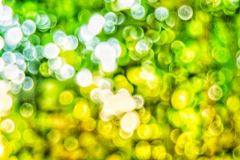 Abstact defocus bokeh light background made of forest style. Abstact defocus bokeh light background made of forest style,Beautiful background image Royalty Free Stock Photos
