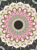 Abstact kaleidoskope photo of pink flower Royalty Free Stock Photos