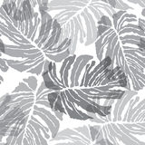 Abstact  seamless pattern. Floral jungle palm leaves textu Royalty Free Stock Photos