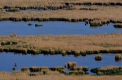 Abstact sjö arkivbild