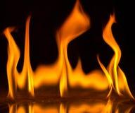 Abstact tapetbrand flammar på svart bakgrund Royaltyfria Foton