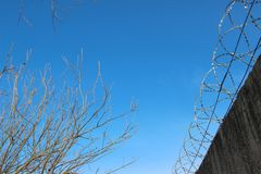 Abstand zwischen Stacheldrahtzaun und Bäumen auf Hintergrund des blauen Himmels lizenzfreie stockfotos