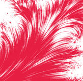 Abstarct red feather background. Drawing of red feather in a white background Stock Photography