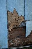 Abstellgleis mit Termiten- und Wetterschaden spinters Holz lizenzfreie stockfotos
