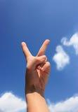 Abstimmung für Frieden Lizenzfreie Stockbilder