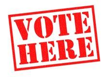 Abstimmung hier lizenzfreie abbildung